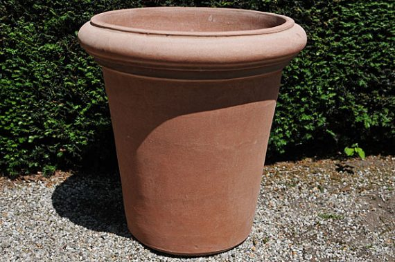 Terracotta pot vaso camelia